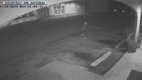 Caught on camera: Suspect burglarizes South Austin restaurant, vandalizes hair salon