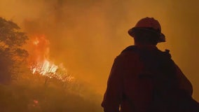 Preventing wildfires in the era of COVID-19