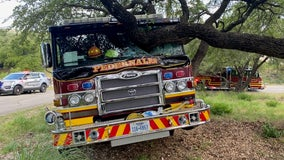 Pedernales fire engine driver loses consciousness during parade, crashes into tree