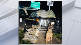 K-9 'Titan' helps troopers find 25 pounds of marijuana stuffed in car