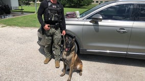 Fayette County K-9 seizes 3.5 kilos of cocaine during traffic stop
