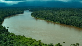 Remote region of Brazil's Amazon counts 1st COVID-19 deaths