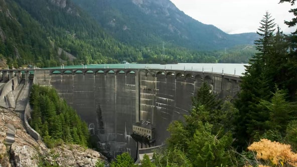 Washington state dams will not be removed to save salmon