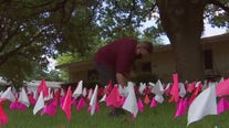 Over 15,000 flags in Austin yard for every Texan life lost to COVID-19
