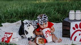 Florida baby, rescued calf delight social media with Chick-fil-A photoshoot