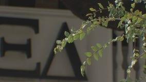 Austin Public Health warns UT Greek life to follow COVID-19 orders