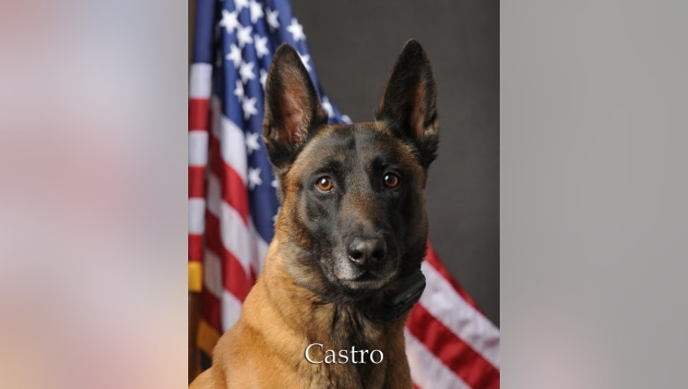 PSD-Castro.jpg