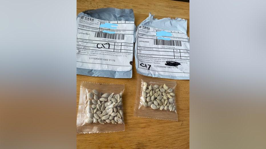 Washington seeds