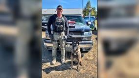 Fayette Co. Narcotics K-9 unit seizes 18.5 pounds of raw fentanyl