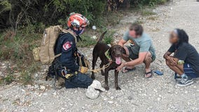 ATCEMS medic rescues dog that fell off a cliff