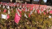 North Austin man plants flags as Texan COVID-19 deaths rise above 30K