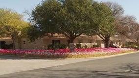 Austin artist prepares to take down COVID-19 memorial flags in yard