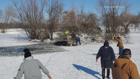 Volunteer firefighters rescue horses from icy Grayson County pond