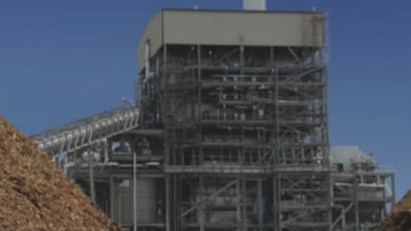 Austin Energy biomass power plant remained offline during outages