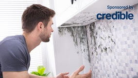 Is mold coverage included in my homeowners insurance policy?