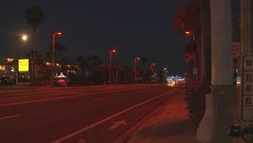Treasure Island installs sea turtle-friendly lights in time for hatchling season