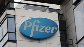 Pfizer CEO says oral antiviral pill to treat COVID-19 could be ready by end of year