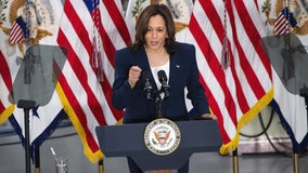 100 days: Vice President Kamala Harris becomes prominent advocate for Biden's agenda