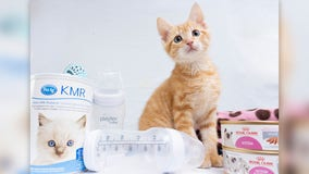 Texas Humane Heroes asks for donations for its Fur Baby Shower