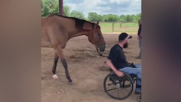 FOX 7 Care Force: Restoration Ranch offers support for veterans