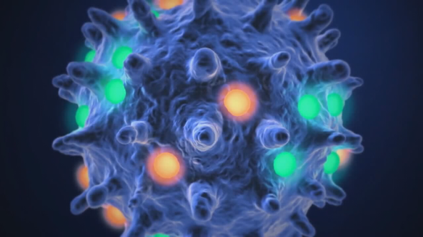 Texas A&M researchers spot new coronavirus variant