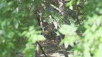 Potential Austin camping zones for homeless border Cedar Park
