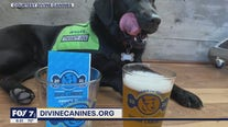 'Barks for Beers' fundraiser: pints to help pups