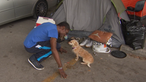 """We're still humans"": Austin man reacts to camping ban reinstatement"
