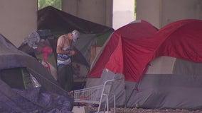 Austin's homeless population decreased slightly, but became more visible