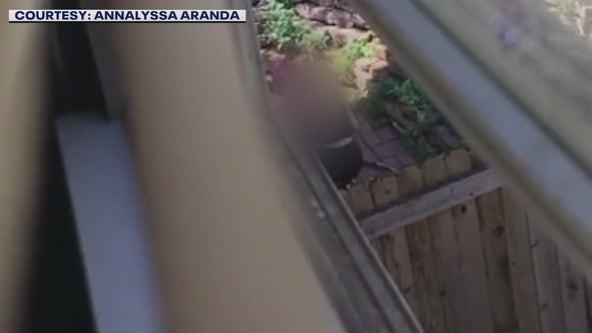 Woman caught on camera hitting dog no longer employed at vet clinic
