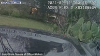 Austin Police release video from fatal shooting of Jordan Walton