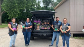 Walmart and APA! partner to donate dog food to support pet families
