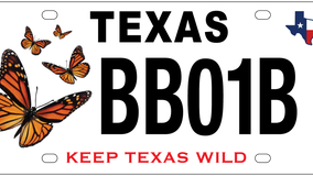 New Texas license plate benefits monarch butterfly conservation