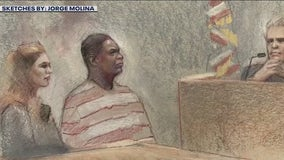 State brings in memory expert in Rodney Reed evidentiary hearing