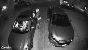 Hutto police searching for suspects following spike in car burglaries