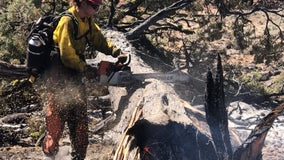 Texas A&M Forest Service sends personnel to fight wildfires in west