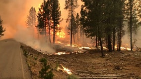 Number of US wildfires so far in 2021 largest in a decade, fire center data says