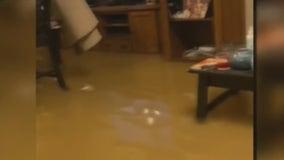 La Grange experiences fast flooding due to rain