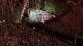 Dairy cows killed after semi-truck crash on freeway near Kalamazoo