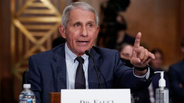 Fauci: Halloween, Thanksgiving, Christmas gatherings safe for vaccinated people