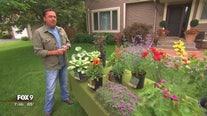 Garden Guy: Top 10 underused perennials