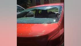 Roseville cars targeted by vandals