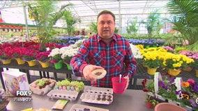 Garden Guy: Make the most of spring despite cold temps