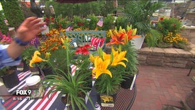Garden Guy Dale K's tips on adding color to July garden