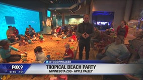 Tropical Beach Party at the Minnesota Zoo