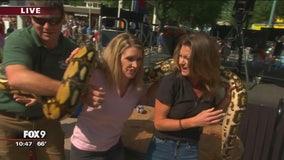 FOX 9's Alex and Leah meet reptiles at the Minnesota State Fair