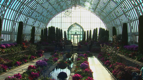 Como Park conservatory to reopen on Monday after COVID closure