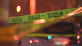 St. Paul launches new task force to combat domestic violence