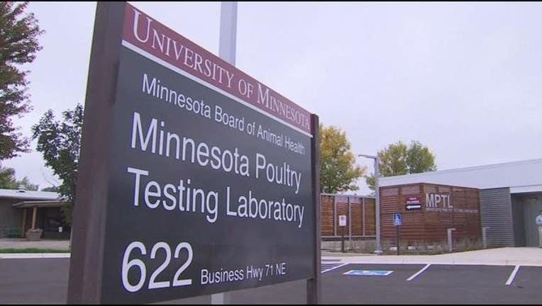 0659e2ad-bird flu poultry testing lab_1474592459282.JPG