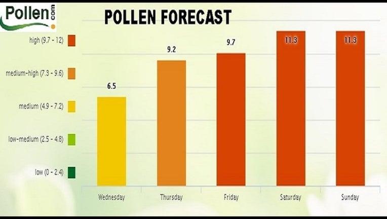 1989c063-PollenForecast_1491446984024.jpg